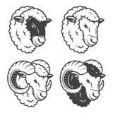 Vectorillustratie van 4 sheeps en rammenhoofden stock illustratie