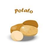 Vectorillustratie van verse aardappel royalty-vrije illustratie