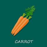 Vectorillustratie van verse wortelen, malplaatje, banner Stock Afbeelding