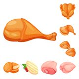 Vectorillustratie van vlees en ruw pictogram Inzameling van vlees en geroosterd vectorpictogram voor voorraad vector illustratie