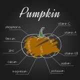 Vectorillustratie van voedende lijst voor pompoen Royalty-vrije Stock Afbeeldingen
