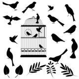Vectorillustratie, van vogelkooi vector illustratie
