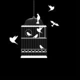 Vectorillustratie, van vogelkooi royalty-vrije illustratie