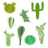 Vectorillustratie vastgestelde cactus in vlakke stijl Stock Fotografie