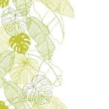 Vectorillustratiebladeren van palm naadloos Stock Afbeeldingen