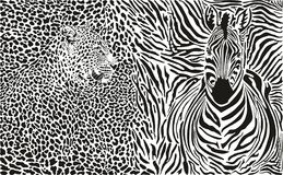 Vectorillustratieluipaard en zebra en patroonachtergrond Royalty-vrije Stock Afbeeldingen