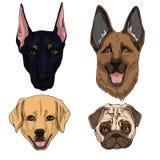 Vectorillustratiereeks honden vlakke pictogrammen Beeldverhaal en realistisch in bruine, zwarte en zandkleuren die op witte achte stock illustratie