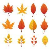 Vectorillustratiereeks van 16 de herfstbladeren Royalty-vrije Stock Afbeelding