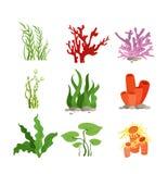 Vectorillustratiereeks van kleurrijk die waterplanten en koraal op witte achtergrond in beeldverhaal vlakke stijl worden geïsolee royalty-vrije illustratie