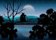 Vectorillustraties, Kattenparen die op de mooie maan letten Royalty-vrije Stock Foto's