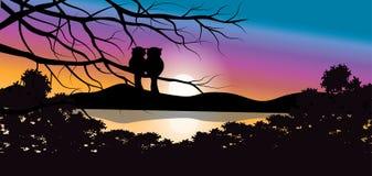 Vectorillustraties, Uil met een mooie zonsondergang Stock Foto's