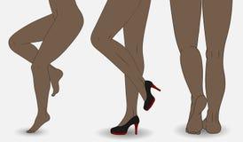 Vectorillustraties vrouwelijke benen Royalty-vrije Stock Afbeeldingen