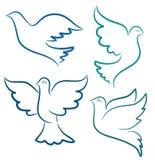 Vectorillustratiesilhouet van vliegende duif vector illustratie