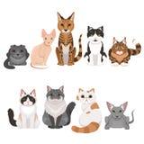 Vectorillustratiesreeks vele verschillende katjes Kattenkarakters in beeldverhaalstijl Royalty-vrije Stock Foto