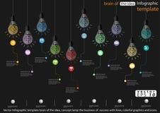 Vectorinfographic-malplaatjehersenen van het idee, de conceptenlamp de zaken van succes met lijnen, de kleurrijke grafiek en de p Stock Afbeelding