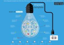 Vectorinfographic-malplaatjehersenen van het idee van de zaken van mededeling voor Aqua-succes met lijnen, kleurrijke grafiek en Royalty-vrije Stock Fotografie