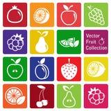 Vectorinzameling: fruitpictogrammen Stock Afbeeldingen