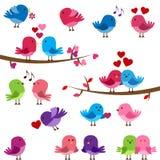 Vectorinzameling van Leuke Liefdevogels Stock Foto