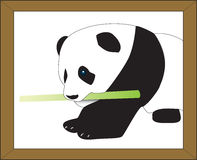 vectorized逗人喜爱的熊猫 免版税库存照片