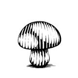 Vectorized Ink Sketch of a Mushroom Stock Images