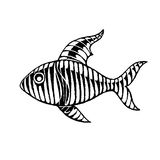 Vectorized Ink Sketch of a Striped Fish Royalty Free Stock Image