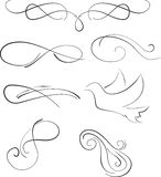 Vectorized Scroll Design. Vectorized Abstract Scroll Design elements Royalty Free Stock Photos
