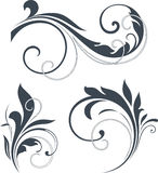 Vectorized Scroll Design Royalty Free Stock Images