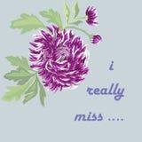 Vectorkaart met lilac bloem Royalty-vrije Stock Foto