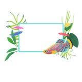 Vectorkadergrens met kleurrijke vissen en algen Stock Afbeeldingen
