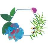 Vectorkadergrens met kleurrijke vissen en algen Royalty-vrije Stock Afbeeldingen