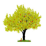 Vectorkersenboom op witte achtergrond Stock Afbeeldingen