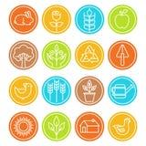 Vectorlandbouwbedrijf en landbouwtekens en symbolen in in lineair s Royalty-vrije Stock Foto's