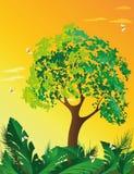 Vectorlandschapsboom op oranje zonsondergang Royalty-vrije Stock Afbeeldingen