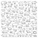 Vectorlijnconcept voor Amerikaanse, Afrikaanse en Australische dieren Stock Fotografie