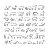 Vectorlijnsilhouetten van binnenlands, landbouwbedrijf en wilde dieren Royalty-vrije Stock Foto's