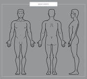 Vectorllustration van het lichaam van mensen stock illustratie