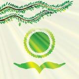 Vectorolijfboom groene achtergrond vector illustratie