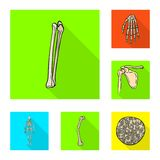 Vectorontwerp van been en skeletteken Inzameling van been en menselijk vectorpictogram voor voorraad royalty-vrije illustratie