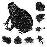 Vectorontwerp van fauna en reptielembleem Reeks van fauna en anuranvoorraadsymbool voor Web royalty-vrije illustratie