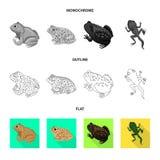 Vectorontwerp van het wild en moerasembleem Inzameling van het wild en reptielvoorraad vectorillustratie royalty-vrije illustratie