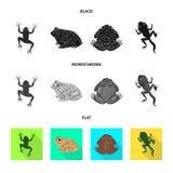 Vectorontwerp van het wild en moerasembleem Reeks van het wild en reptielvoorraad vectorillustratie vector illustratie