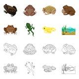 Vectorontwerp van het wild en moeraspictogram Inzameling van het wild en reptielvoorraad vectorillustratie royalty-vrije illustratie