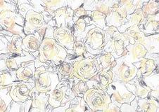 Vectorpatroon met naadloze rozen op witte achtergrond Stock Afbeelding