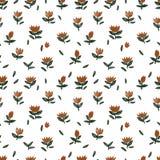 Vectorpatroon met natuurlijke beweging veroorzakende, kleine rode bloemen op een wit Stock Afbeeldingen