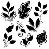 Vectorreeks Bladeren Geïsoleerde stencils Stock Foto's