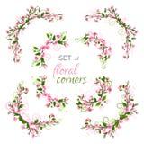 Vectorreeks de lente bloemenhoeken Royalty-vrije Stock Foto