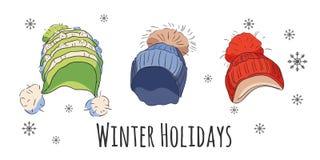 Vectorreeks de wintertoebehoren Stock Foto