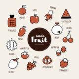 Vectorreeks fruitpictogrammen doodle stock illustratie