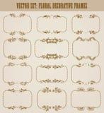 Vectorreeks gouden decoratieve grenzen, kader Royalty-vrije Stock Afbeelding