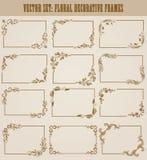 Vectorreeks gouden decoratieve grenzen, kader Royalty-vrije Stock Fotografie